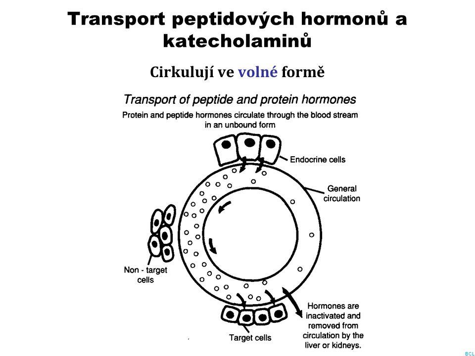 Transport peptidových hormonů a katecholaminů