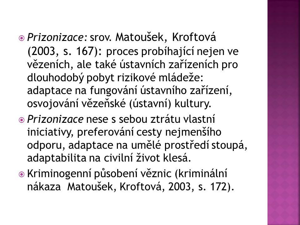 Prizonizace: srov. Matoušek, Kroftová (2003, s