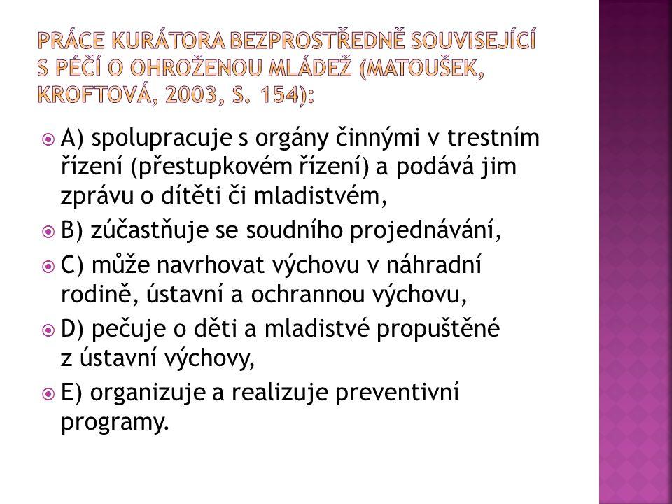 Práce kurátora bezprostředně související s péčí o Ohroženou mládež (Matoušek, Kroftová, 2003, s. 154):