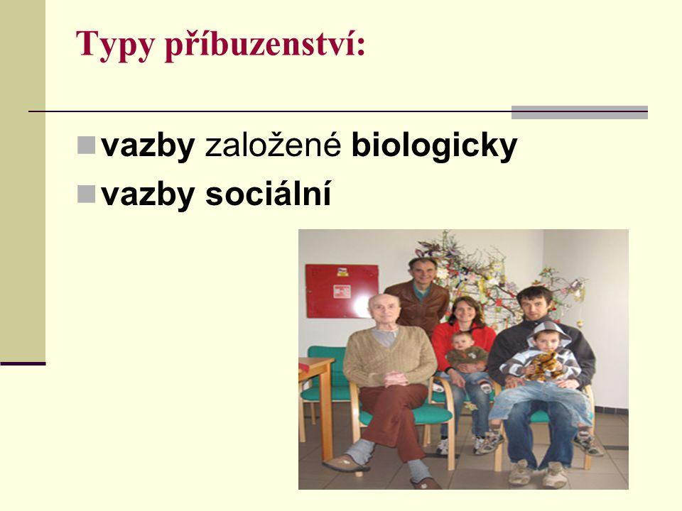 Typy příbuzenství: vazby založené biologicky vazby sociální