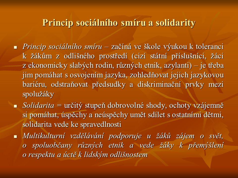 Princip sociálního smíru a solidarity