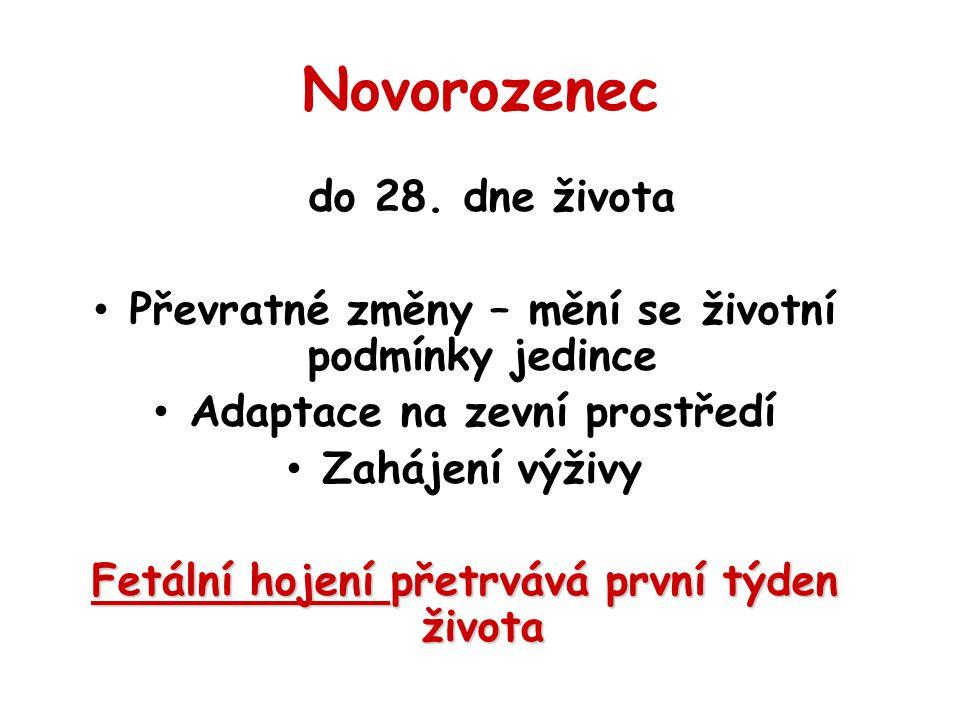 Novorozenec do 28. dne života