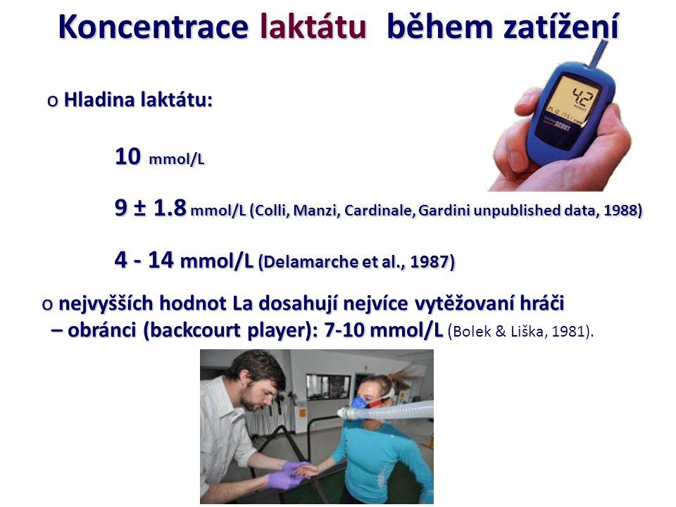 Koncentrace laktátu během zatížení