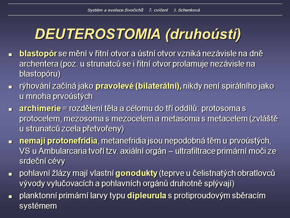 DEUTEROSTOMIA (druhoústí)