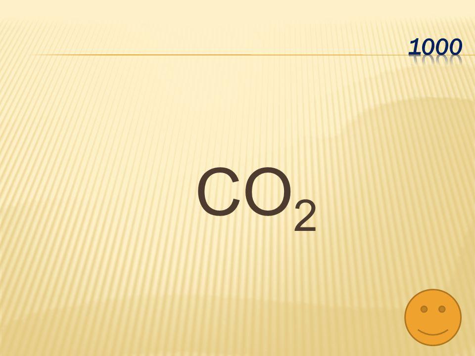 1000 CO2