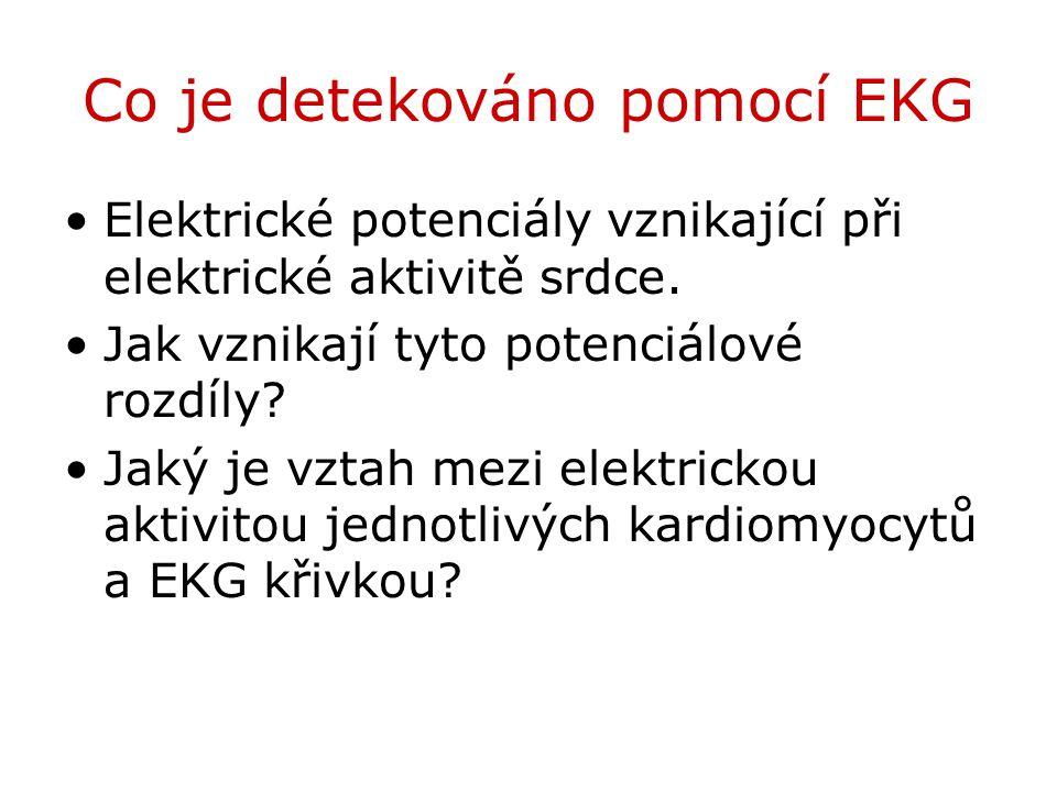 Co je detekováno pomocí EKG
