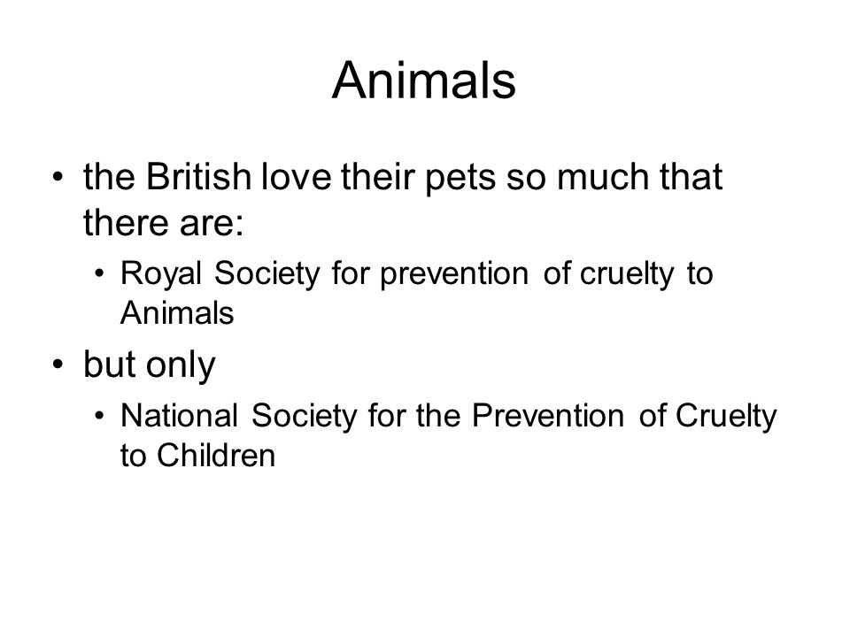 Animals the British love their pets so much that there are: but only