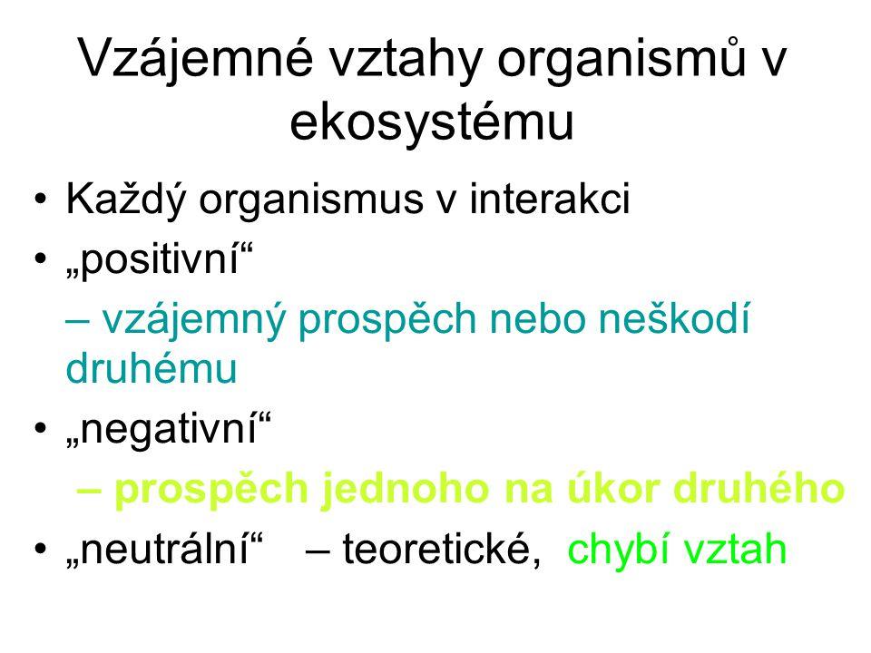 Vzájemné vztahy organismů v ekosystému