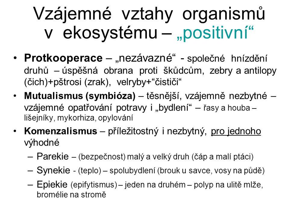 """Vzájemné vztahy organismů v ekosystému – """"positivní"""