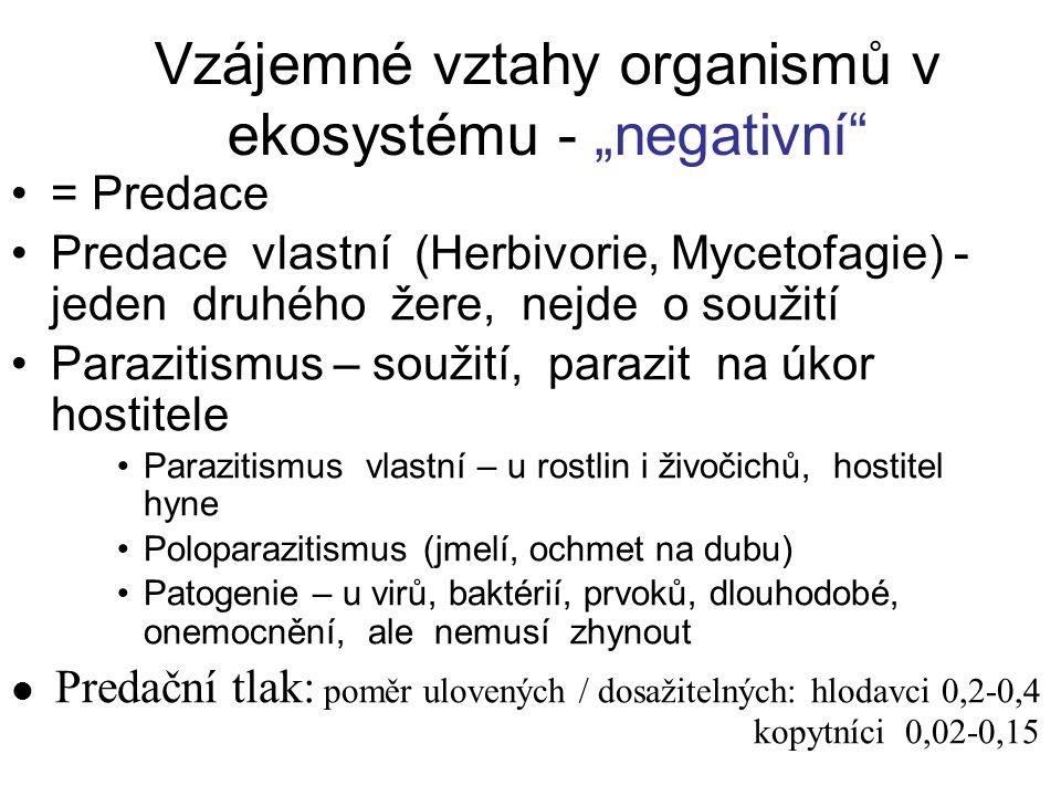 """Vzájemné vztahy organismů v ekosystému - """"negativní"""