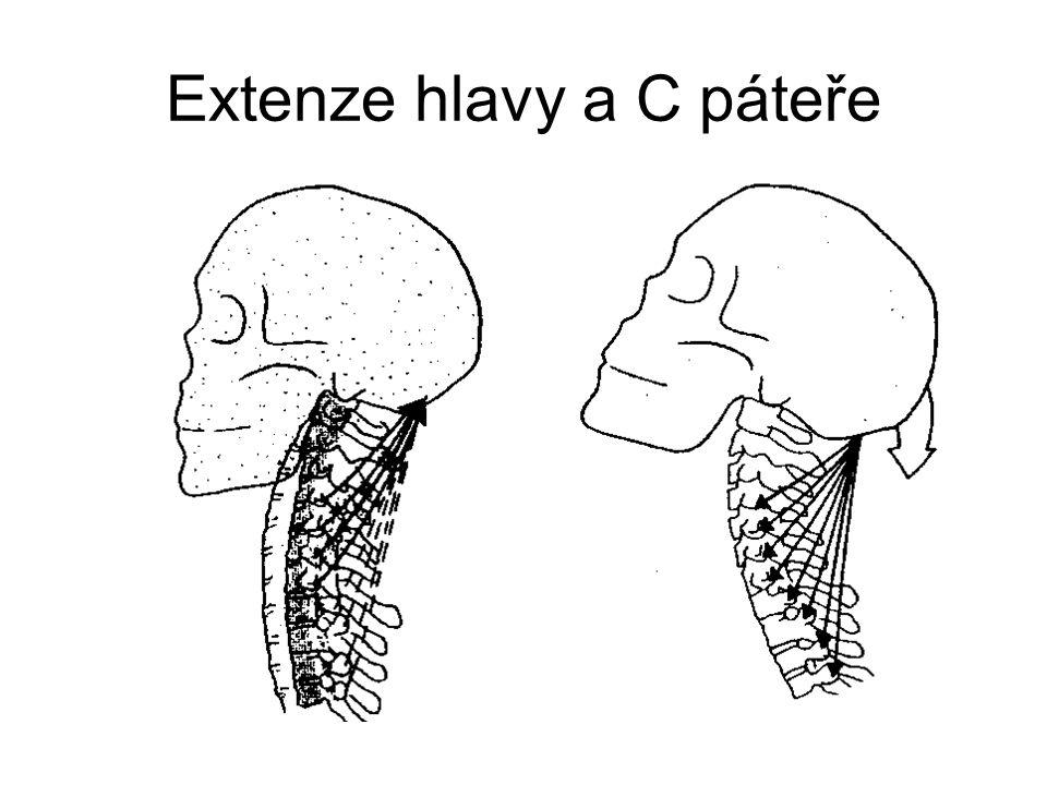 Extenze hlavy a C páteře