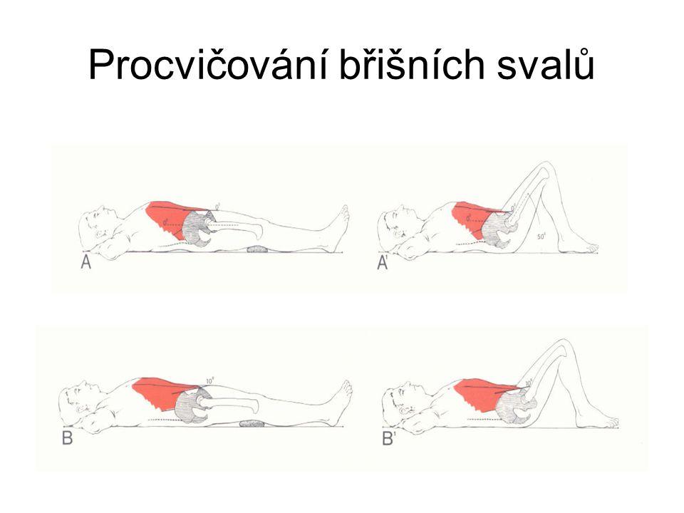 Procvičování břišních svalů