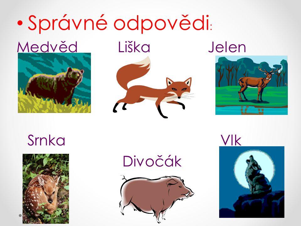 Správné odpovědi: Medvěd Liška Jelen. Srnka Vlk.