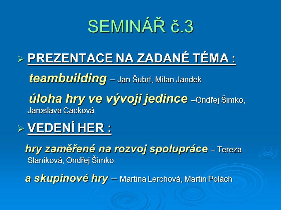SEMINÁŘ č.3 teambuilding – Jan Šubrt, Milan Jandek