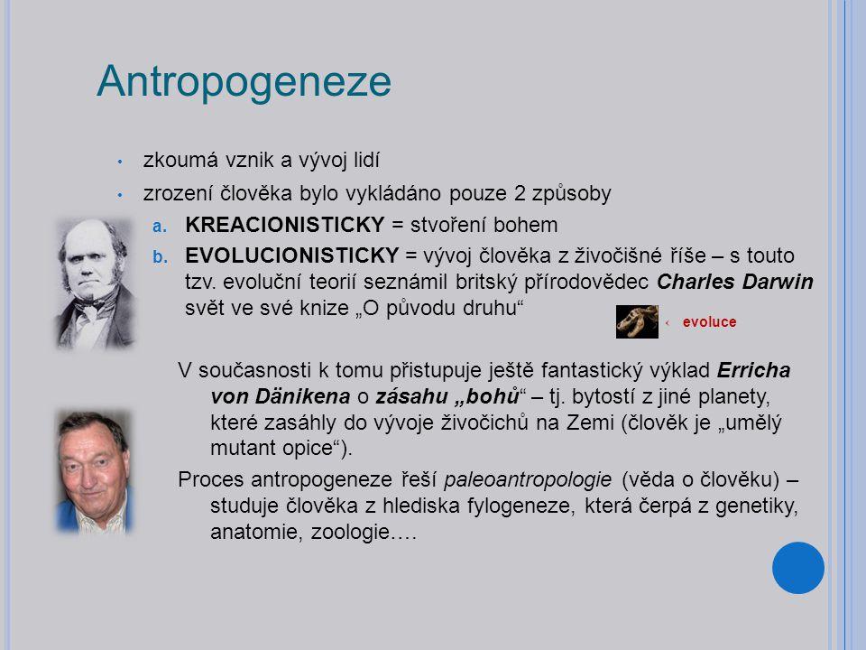 Antropogeneze zkoumá vznik a vývoj lidí