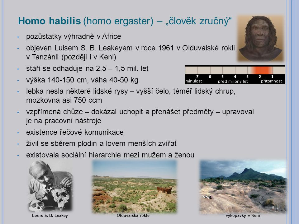 """Homo habilis (homo ergaster) – """"člověk zručný"""