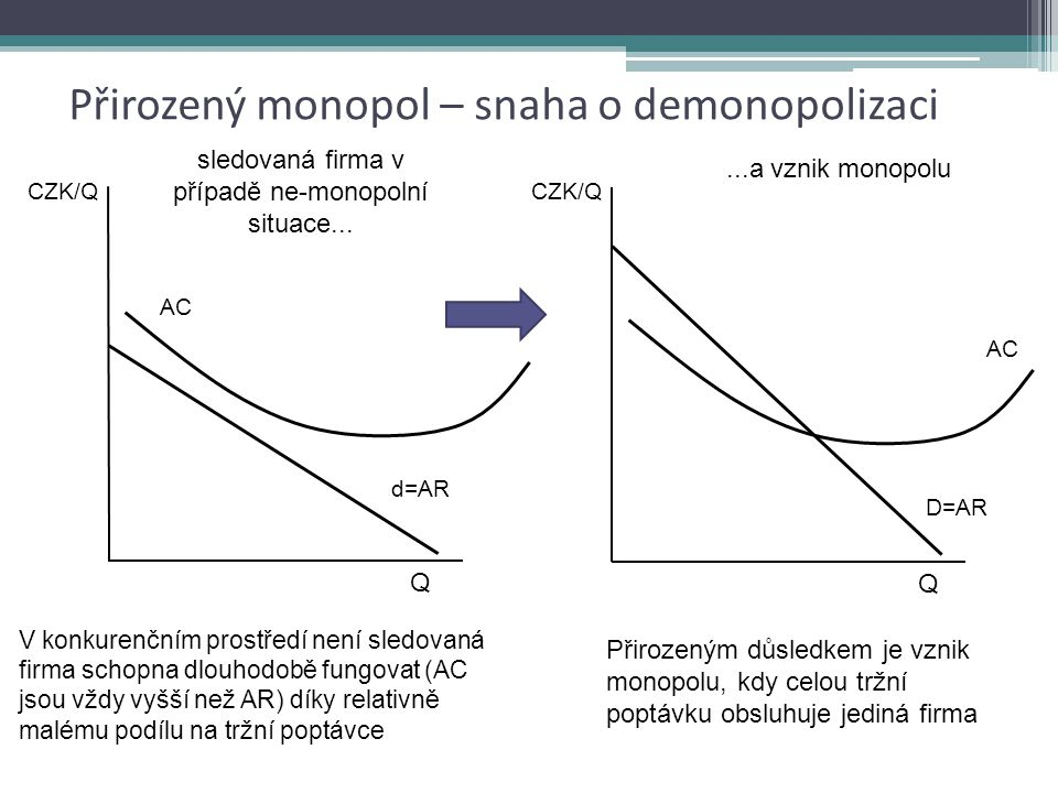 Přirozený monopol – snaha o demonopolizaci
