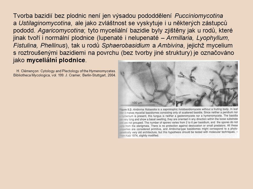 Tvorba bazidií bez plodnic není jen výsadou pododdělení Pucciniomycotina a Ustilaginomycotina, ale jako zvláštnost se vyskytuje i u některých zástupců pododd. Agaricomycotina; tyto myceliální bazidie byly zjištěny jak u rodů, které jinak tvoří i normální plodnice (lupenaté i nelupenaté – Armillaria, Lyophyllum, Fistulina, Phellinus), tak u rodů Sphaerobasidium a Ambivina, jejichž mycelium s roztroušenými bazidiemi na povrchu (bez tvorby jiné struktury) je označováno jako myceliální plodnice.