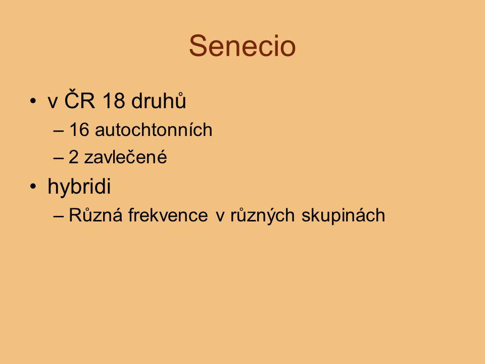Senecio v ČR 18 druhů hybridi 16 autochtonních 2 zavlečené