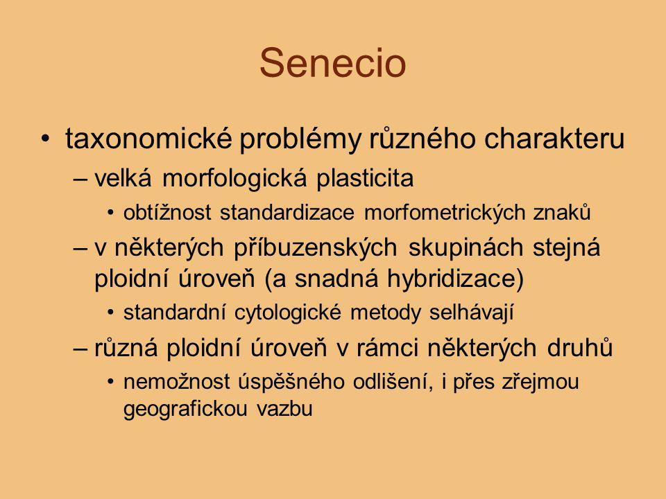 Senecio taxonomické problémy různého charakteru