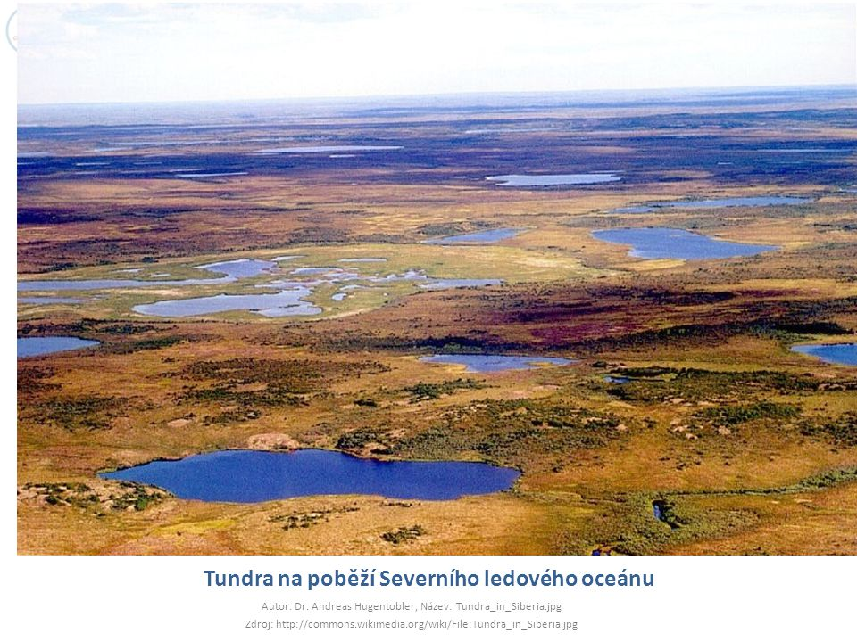 Tundra na poběží Severního ledového oceánu