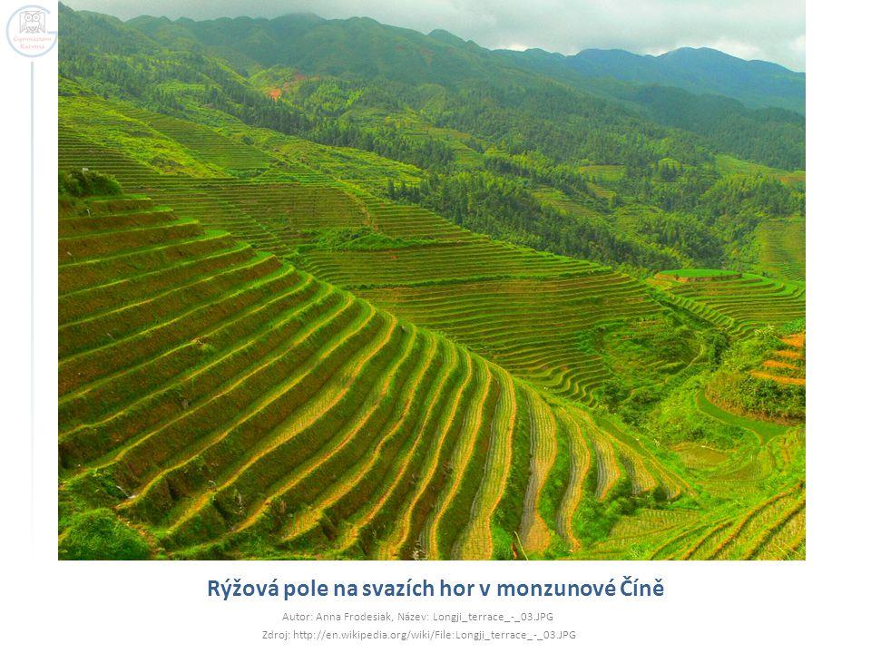 Rýžová pole na svazích hor v monzunové Číně