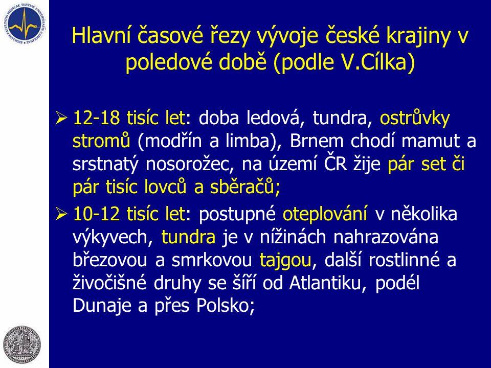 Hlavní časové řezy vývoje české krajiny v poledové době (podle V