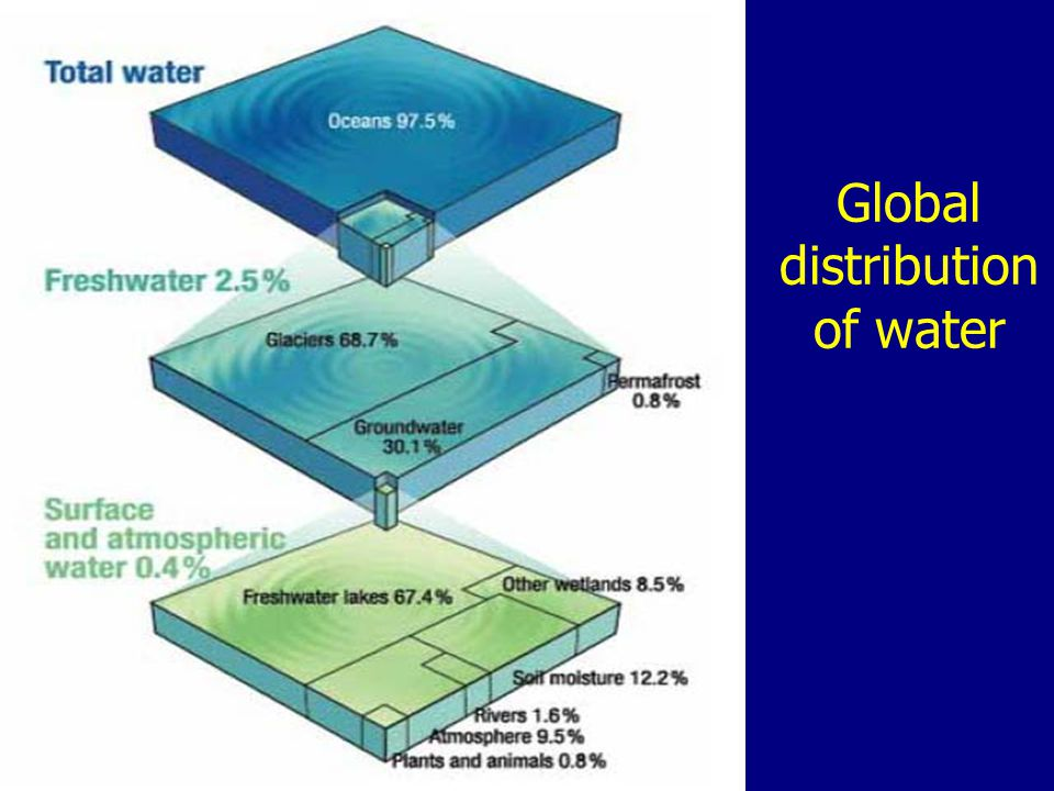 Global distribution of water