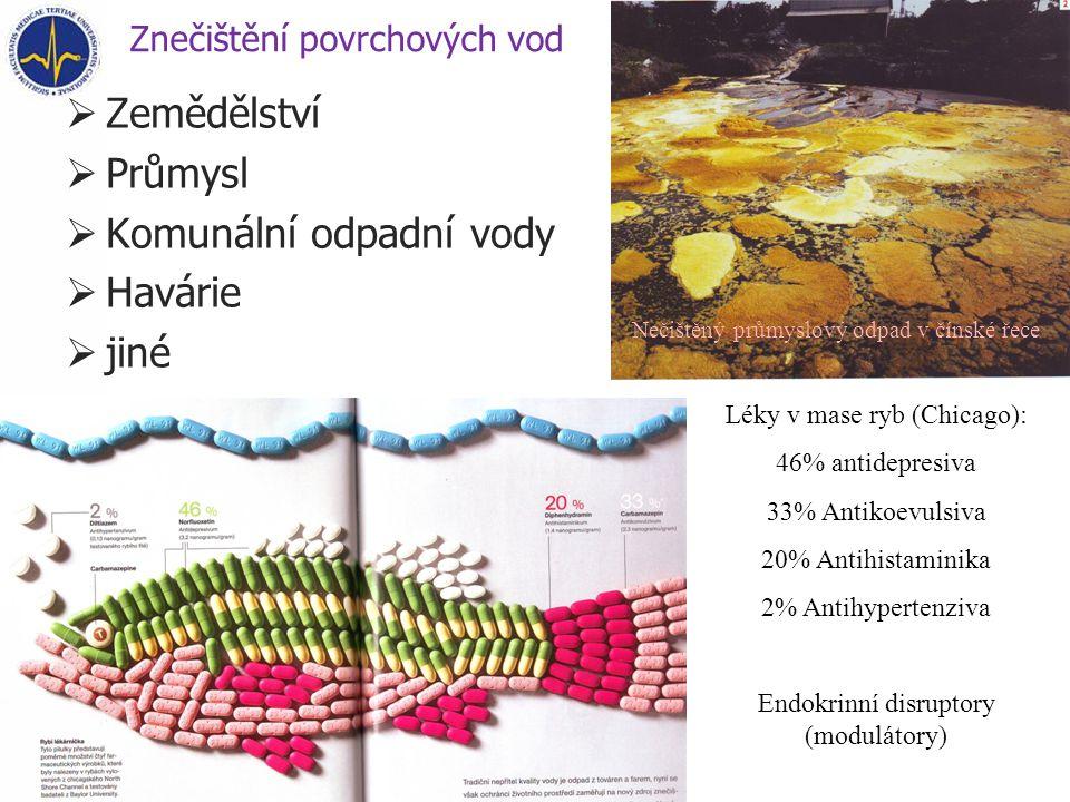 Znečištění povrchových vod