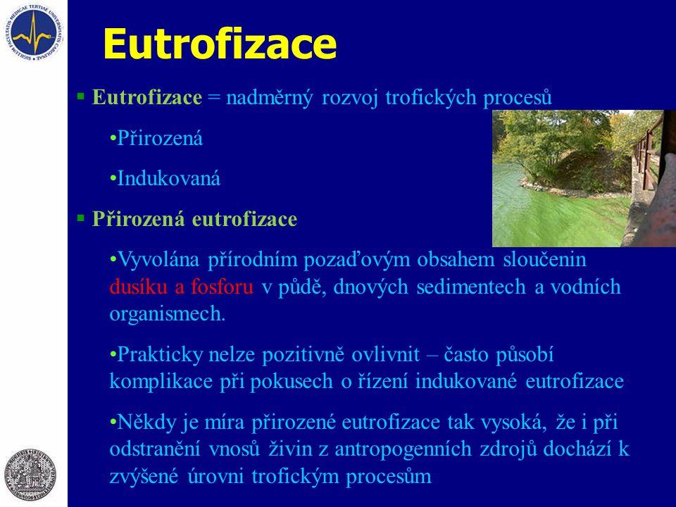 Eutrofizace Eutrofizace = nadměrný rozvoj trofických procesů Přirozená
