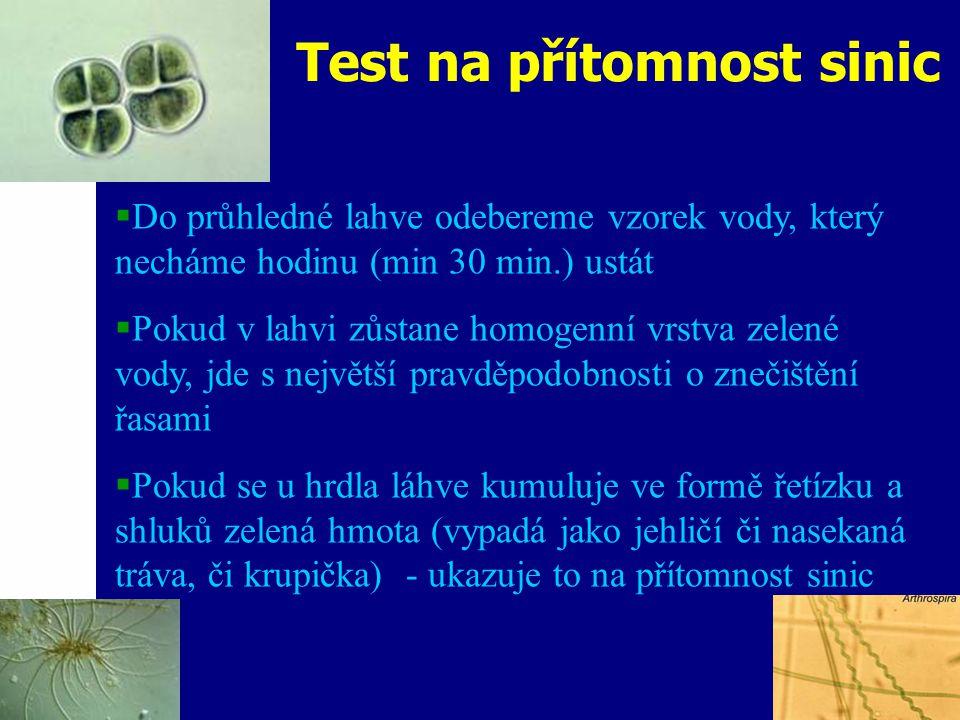 Test na přítomnost sinic