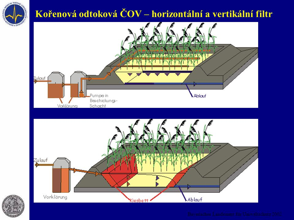 Kořenová odtoková ČOV – horizontální a vertikální filtr