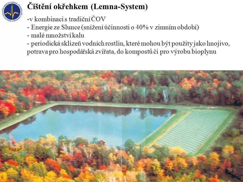 Čištění okřehkem (Lemna-System)