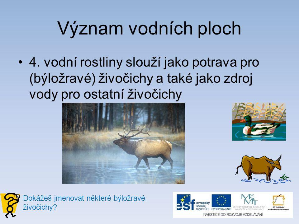 Význam vodních ploch 4. vodní rostliny slouží jako potrava pro (býložravé) živočichy a také jako zdroj vody pro ostatní živočichy.