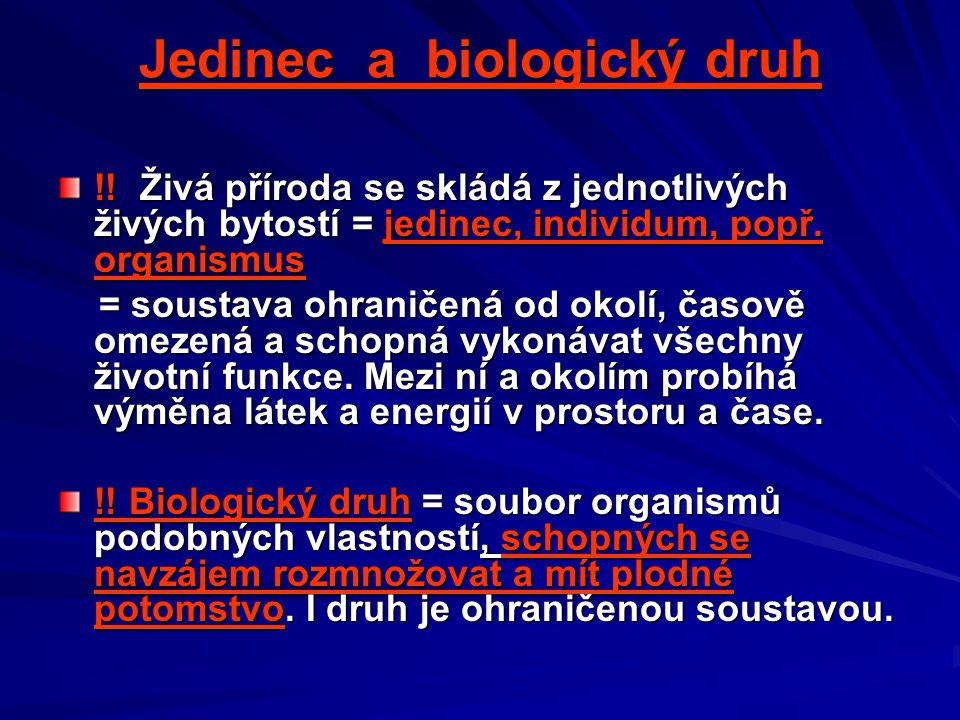 Jedinec a biologický druh