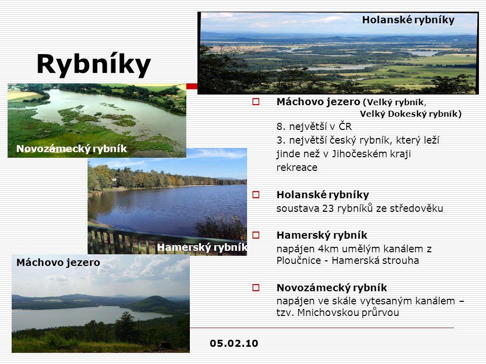 Rybníky Holanské rybníky Máchovo jezero (Velký rybník,
