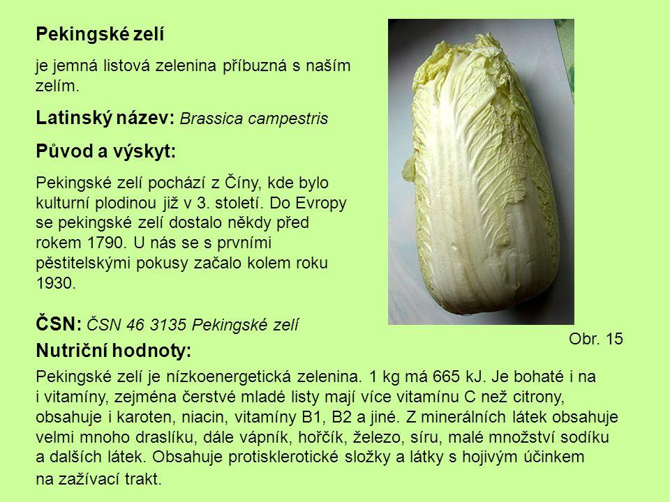 Latinský název: Brassica campestris Původ a výskyt: