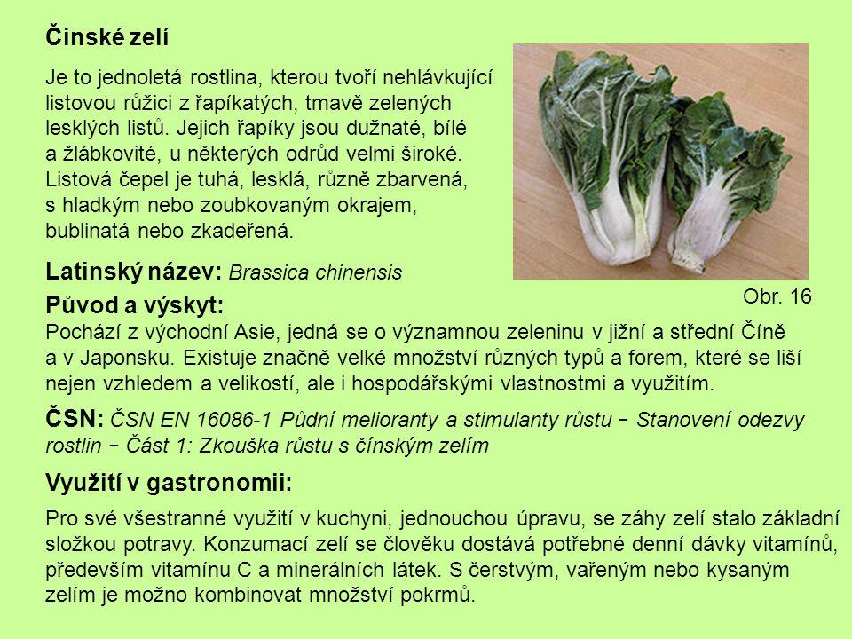 Latinský název: Brassica chinensis
