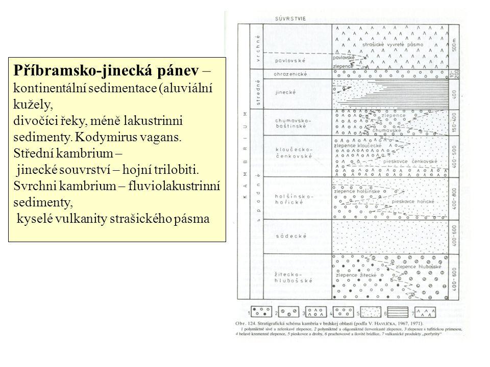 Příbramsko-jinecká pánev – kontinentální sedimentace (aluviální kužely,