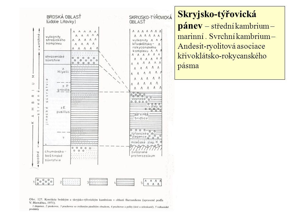 Skryjsko-týřovická pánev – střední kambrium – marinní