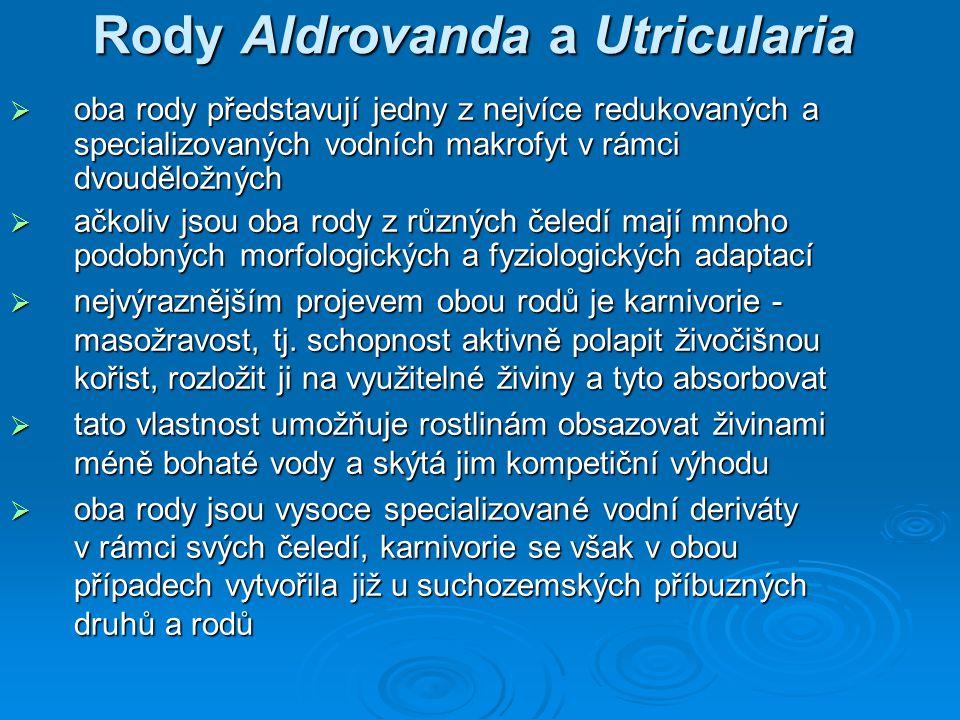Rody Aldrovanda a Utricularia