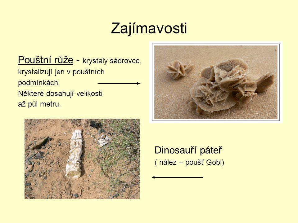 Zajímavosti Pouštní růže - krystaly sádrovce, Dinosauří páteř