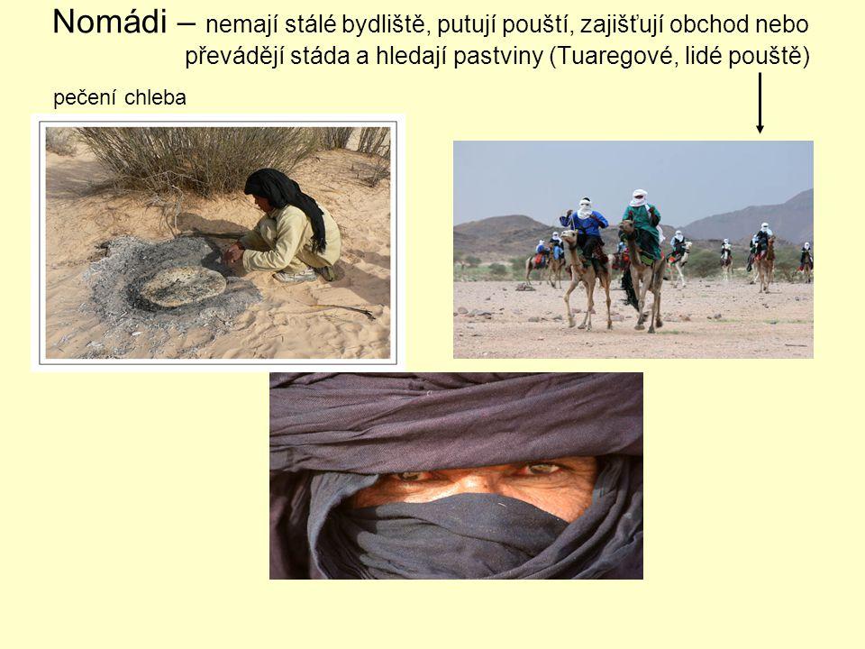Nomádi – nemají stálé bydliště, putují pouští, zajišťují obchod nebo