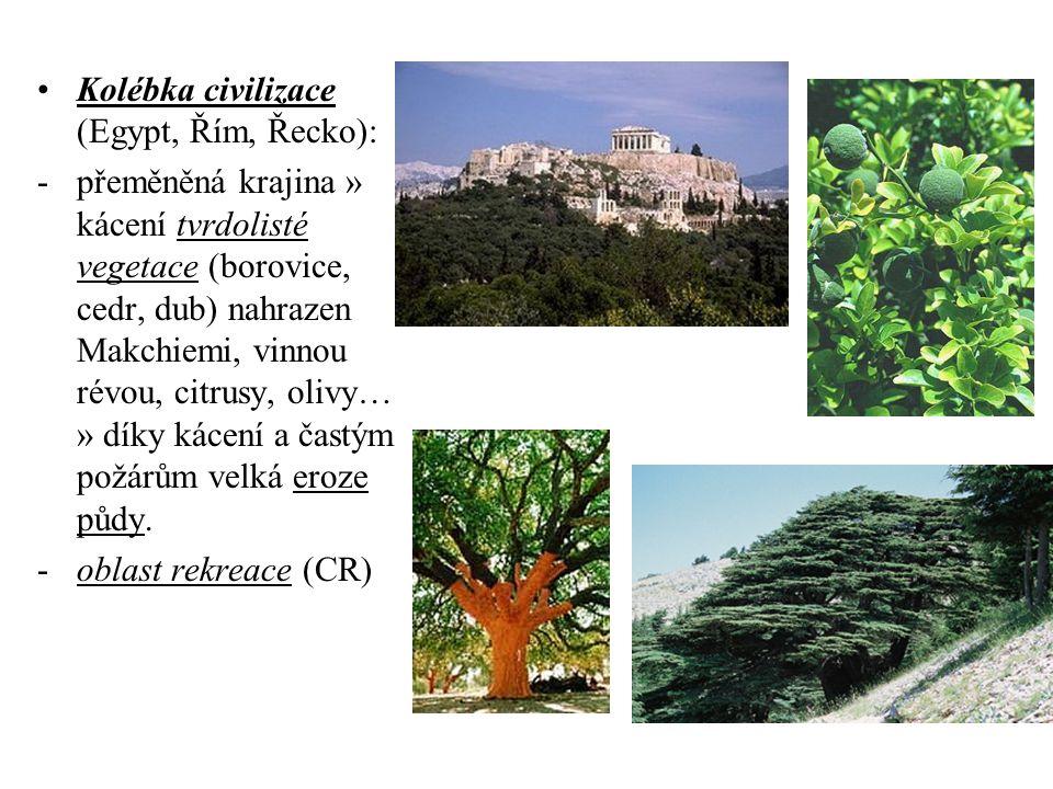Kolébka civilizace (Egypt, Řím, Řecko):