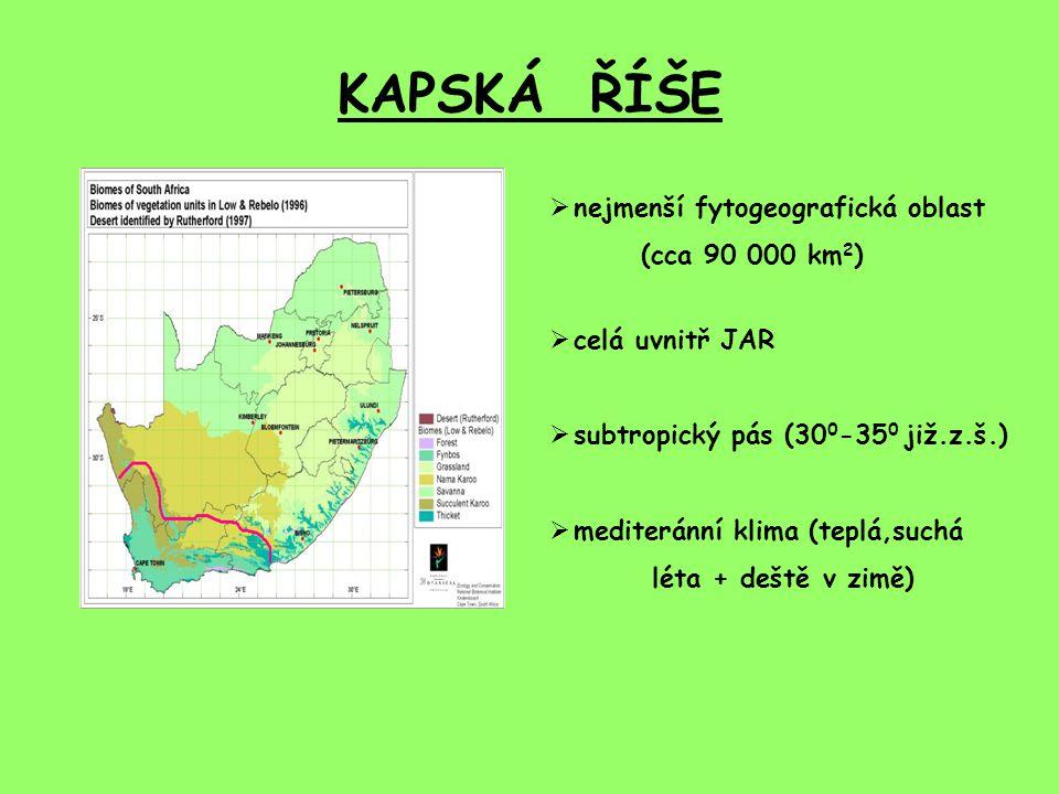 KAPSKÁ ŘÍŠE nejmenší fytogeografická oblast (cca 90 000 km2)