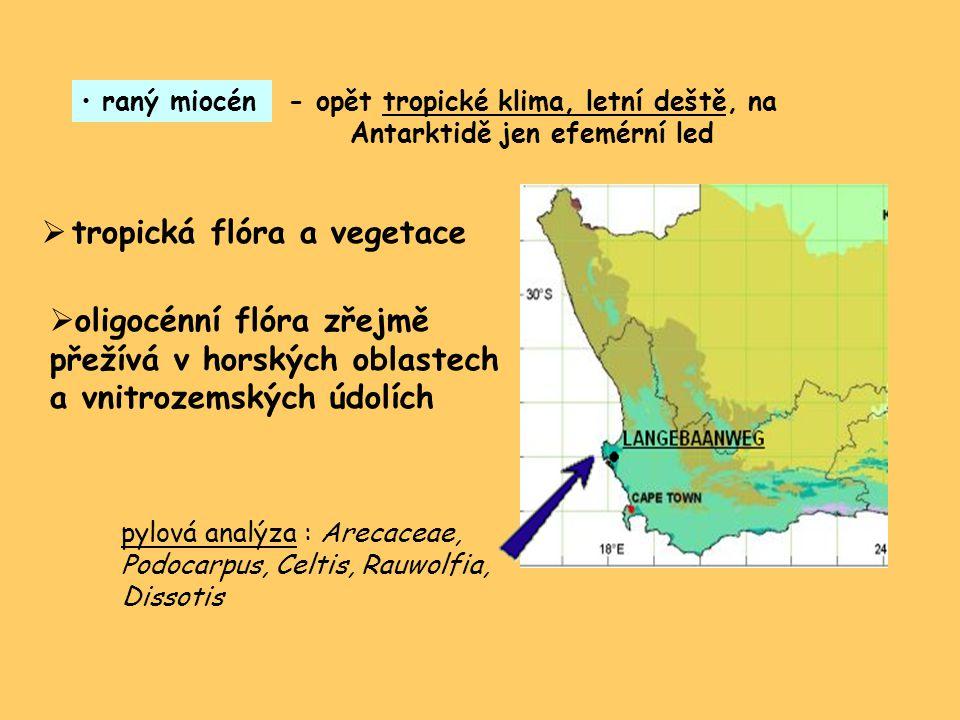 - opět tropické klima, letní deště, na Antarktidě jen efemérní led