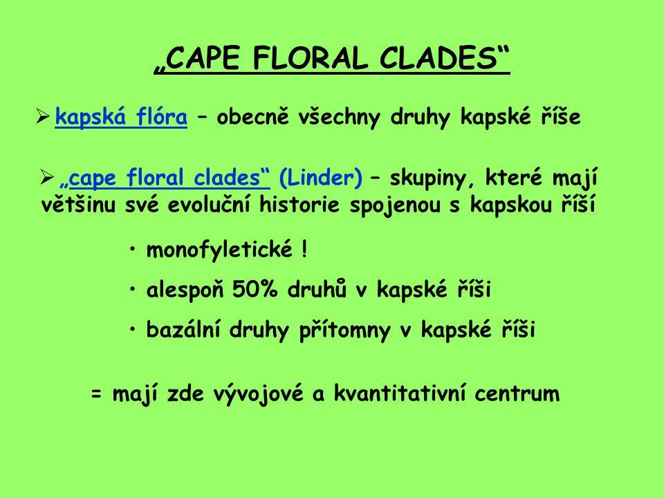"""""""CAPE FLORAL CLADES kapská flóra – obecně všechny druhy kapské říše"""