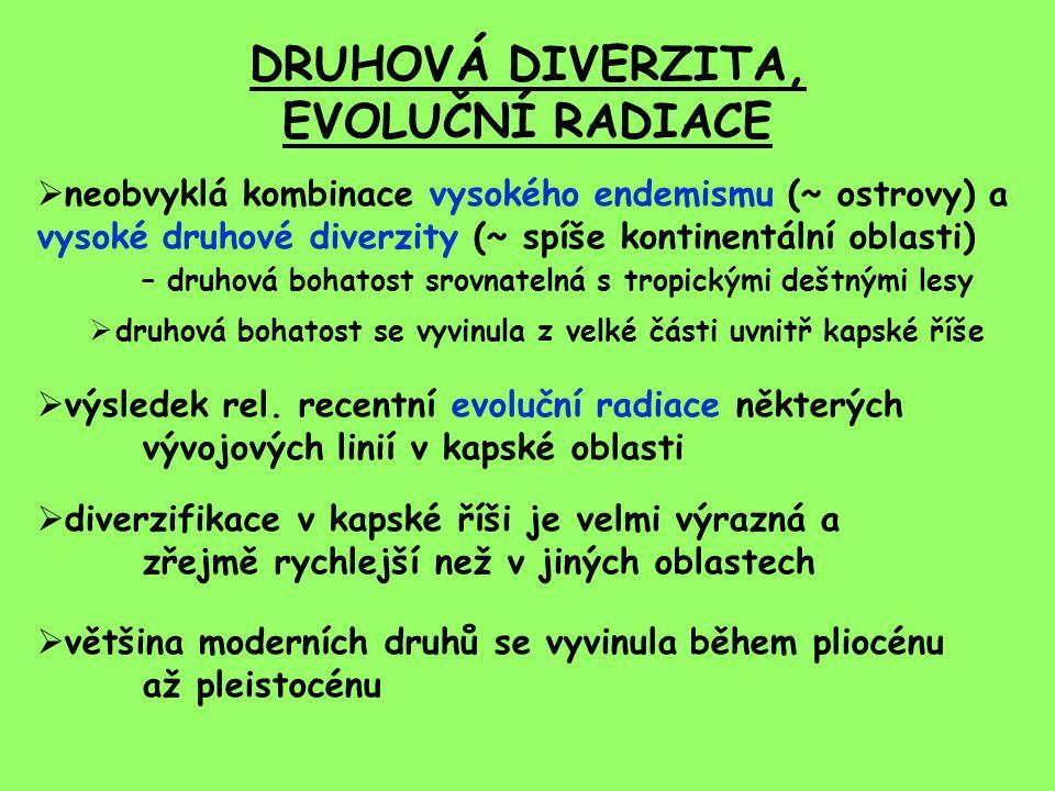 DRUHOVÁ DIVERZITA, EVOLUČNÍ RADIACE