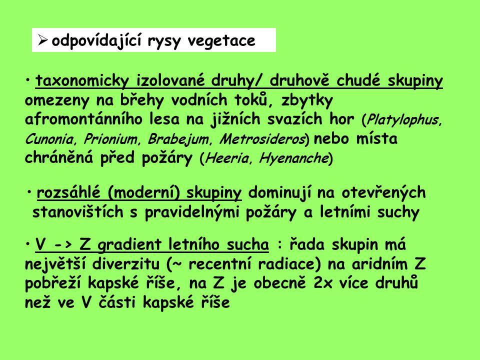 odpovídající rysy vegetace