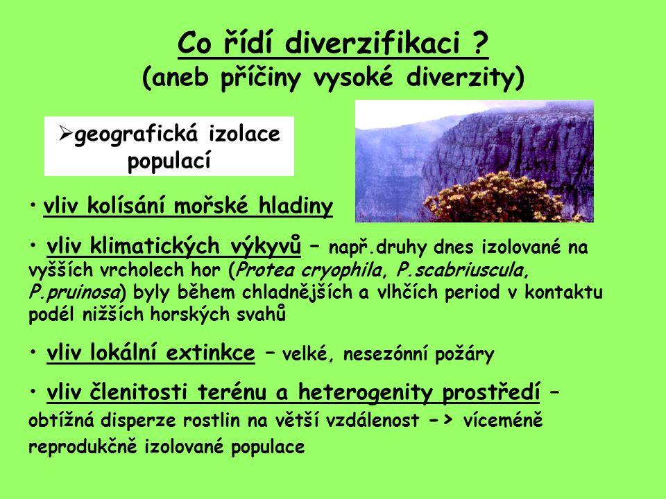 Co řídí diverzifikaci (aneb příčiny vysoké diverzity)